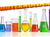 Download PPT BIOTEKNOLOGI