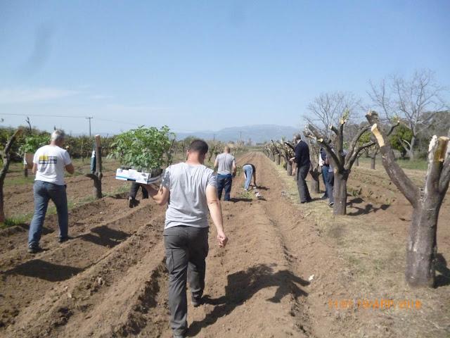 ΚΕΘΕΑ ΚΥΤΤΑΡΟ: Καλλιεργώντας την ελπίδα στις φυλακές της Τύρινθας