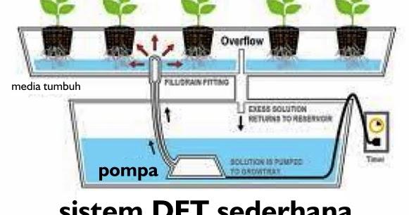 Desain Rak Hidroponik Sistem DFT dan NFT - Cara Tanam ...