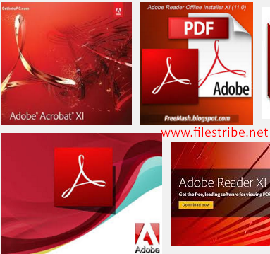 Adobe Reader 11.0.10 Offline Installer Free Download