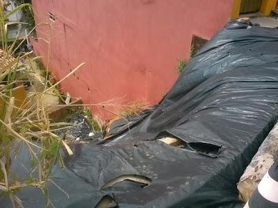 Moradores da Rua Macaúbas denunciam abandono do local