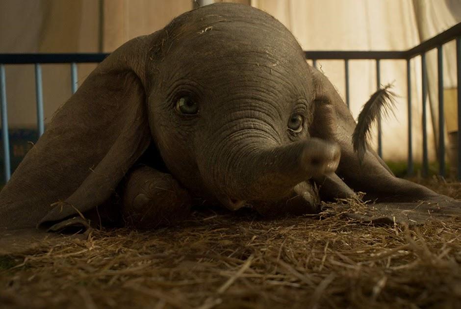 """Novo trailer de """"Dumbo"""" faz o elefantinho voar"""