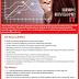 Vacancy In Seylon Bank PLC  Post Of - Ile Rpg Developer It