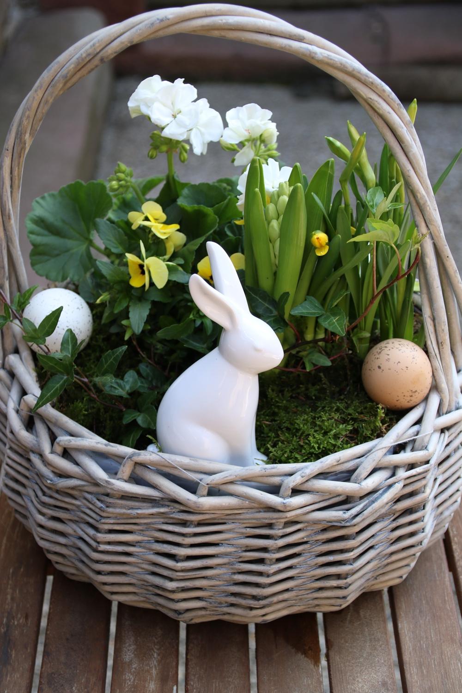 wolkenfees k chenwerkstatt diy osterkorb mit pflanzen eiern und osterhase. Black Bedroom Furniture Sets. Home Design Ideas