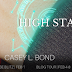 Release Blitz - High Stakes by Casey L. Bond