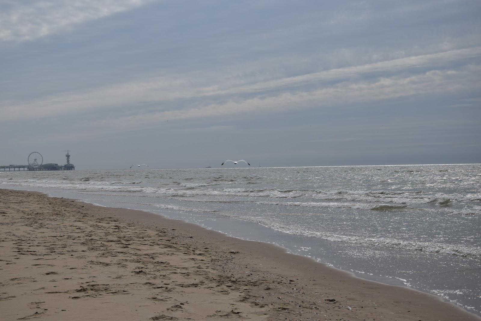 Scheveningen plaża