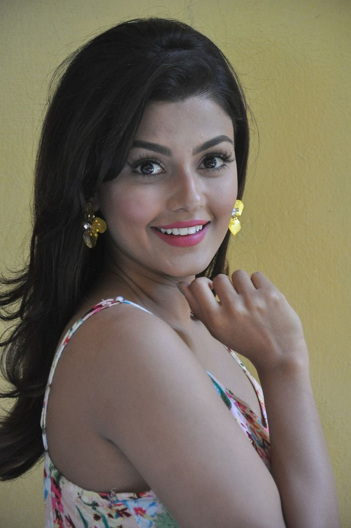 Anisha Ambrose at Fashion Designer Movie Successmeet Gallery