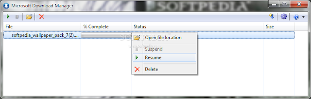 تحميل برنامج مايكروسوفت داونلود مانجر مجانا Microsoft Download Manager 1.2.1