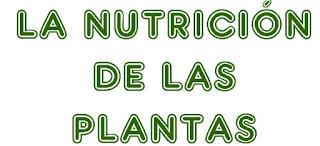 http://capitaneducacion.blogspot.com.es/2017/11/3-primaria-ciencias-de-la-naturaleza_55.html