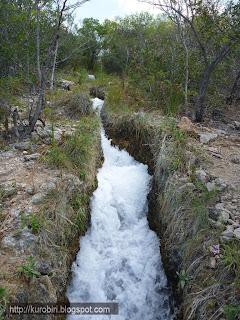 Cenotes+de+Candelaria+Guatemala+%252816%2529 - Guía turística – Cenotes de Candelaria