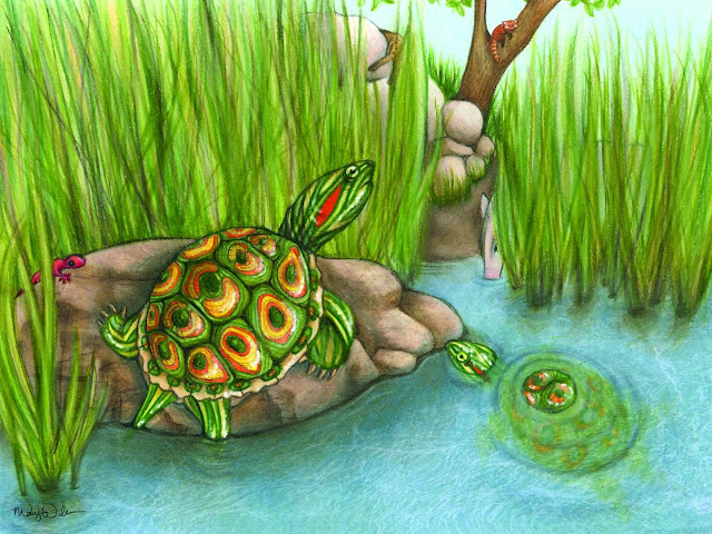 Fossil turtle species, 5.5 million years old, sheds light on invasive modern relatives
