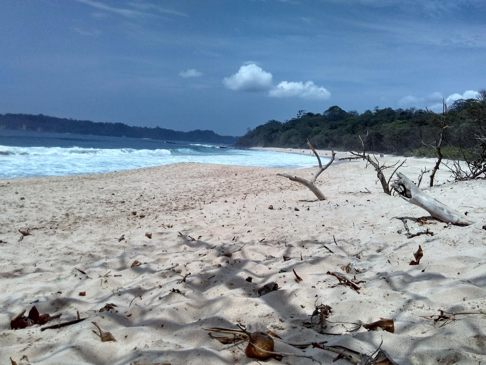 gambar Pantai Sendikis