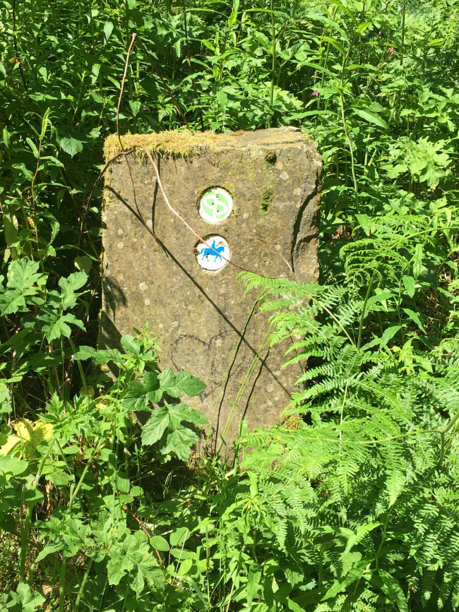 Llwyn-Celyn-whips-an-easy-walk-with-a-view-waymarker