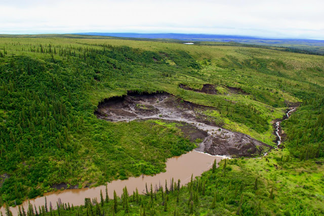 Record levels of mercury released by thawing permafrost in Canadian Arctic