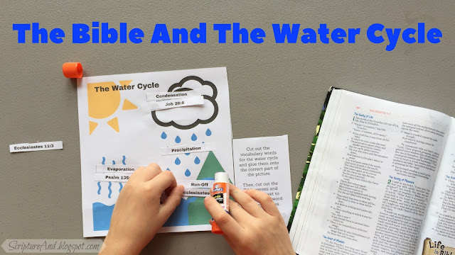 The Water Cycle In The Bible Worksheet | scriptureand.blogspot.com