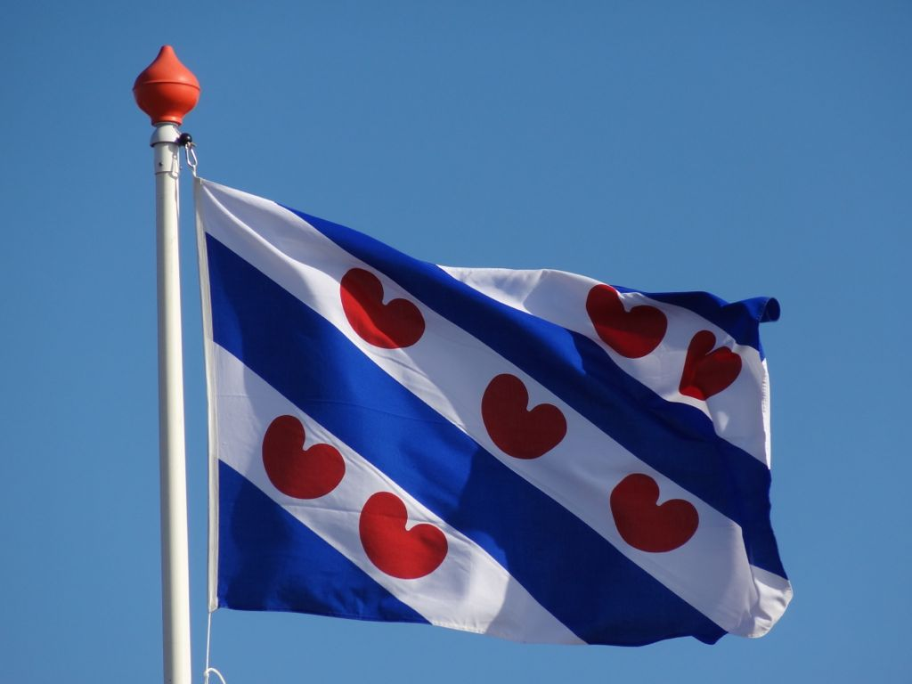 Friese-vlag.jpg