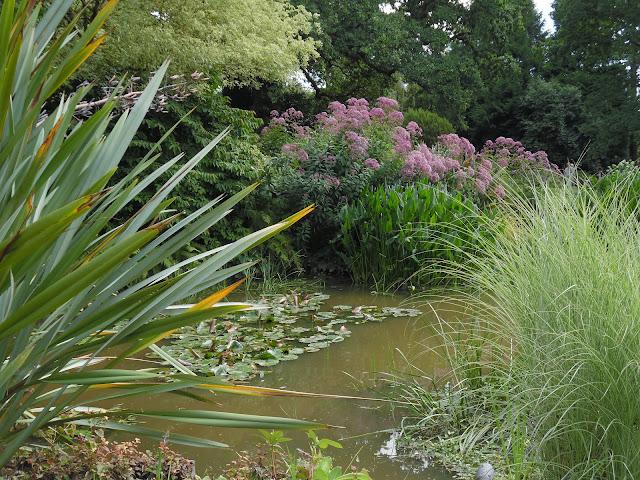staw w ogrodzie, ogród angielski