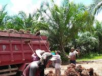 Sadis..!!!  Perusahaan Asal Malaysia Ini, Tidak Membayar Gaji  Ribuan Karyawan Selama 3 Bulan
