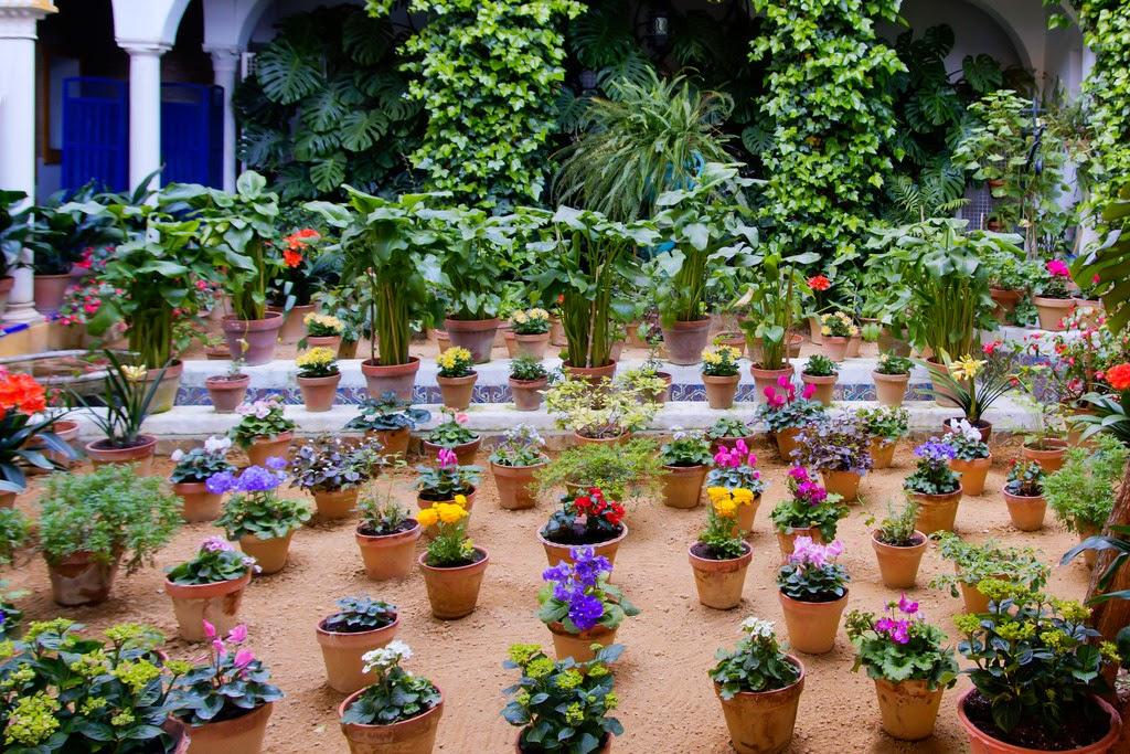 Tipos de recipientes y jardineras para nuestro jard n y - Tipos de jardineras ...