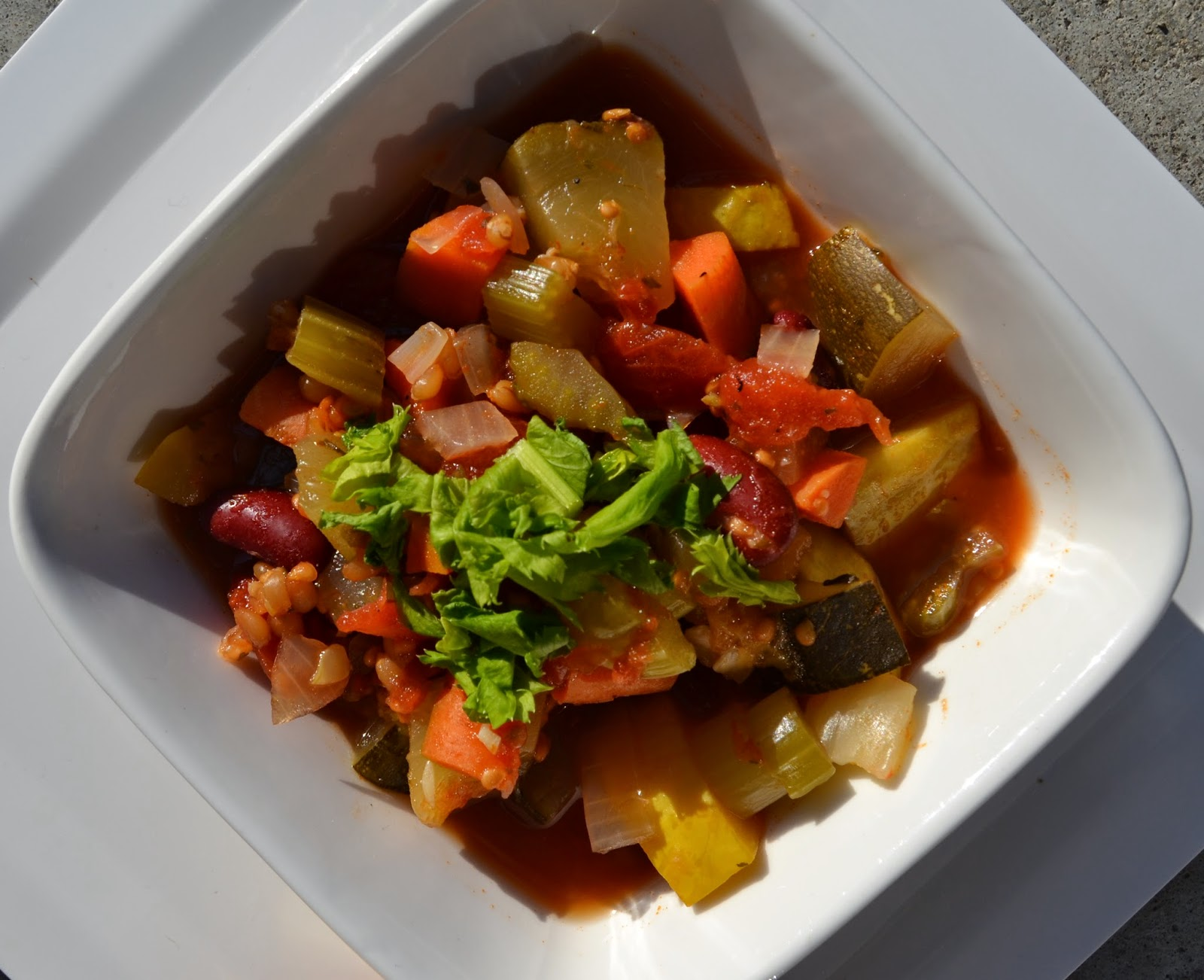 Spicy Minestrone Soup