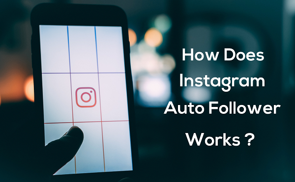 auto follower for instagram