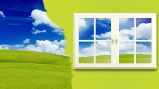 Grass and window