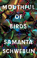 Review of Headlights from Mouthful of Birds by Samanta Schweblin