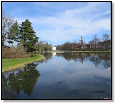 Ausflug zum Wörlitzer Park