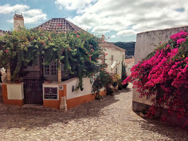 Buganvilla Obidos Portugal