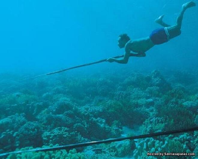 Suku Bajau Laut Mampu Menyelam Selama 13 Minit Sedalam 70 Meter Tanpa Oksigen!