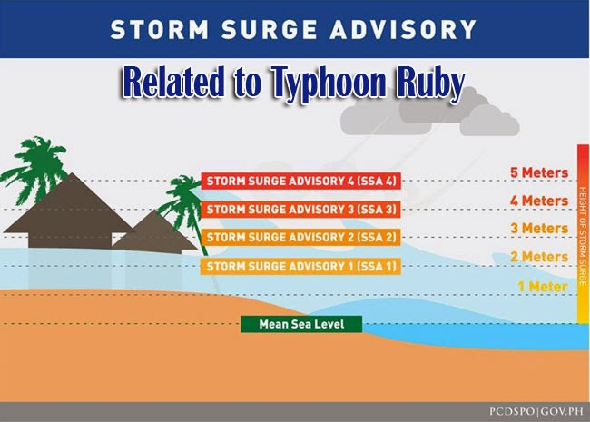 Storm Surge Advisory Related to Typhoon Ruby Released by Project NOAH with Computer Model