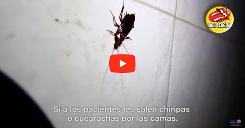 Pacientes del Lídice se pelean con cucarachas y ratones para poder dormir