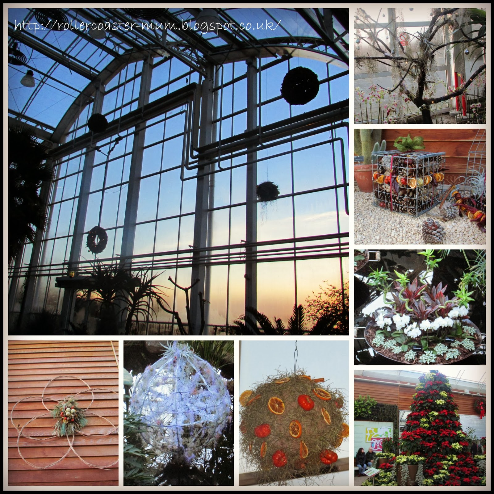 Beautiful natural Christmas decorations in the Glasshouse, RHS Wisley