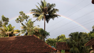 Rainbow_Nature's Bliss