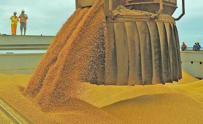 Em função de alterações climáticas, SNA estima redução na safra de soja 2018/19 para 114 milhões de toneladas