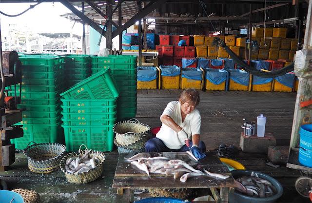 Fischfang Pangkor