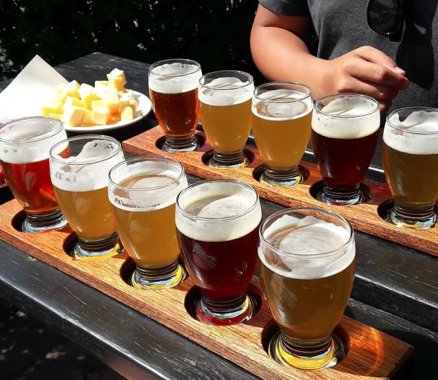dicas de amsterdam cerveja artesanal - amanda laboredo