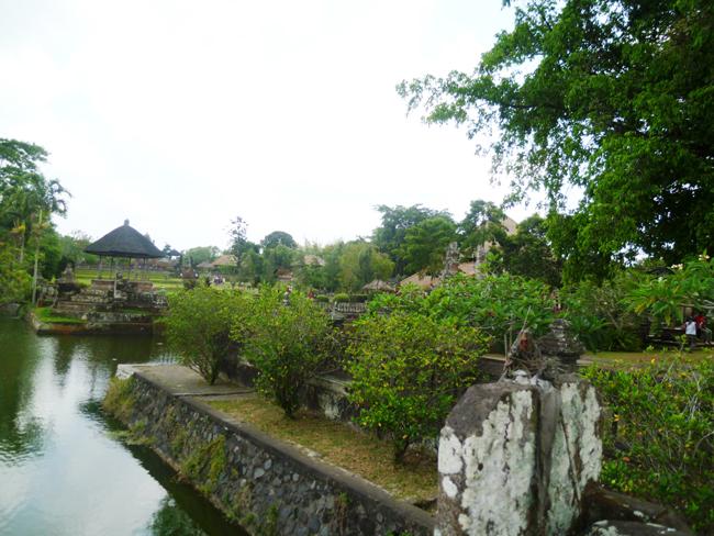 El parque y el rio