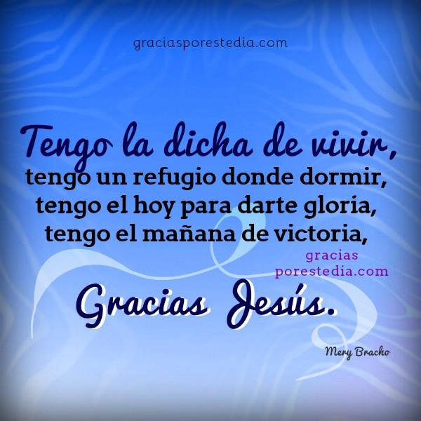 Imágenes cristianas con oración de gracias, reflexión y acción de gracias a Jesús, hijo de Dios, plegaria de acción de gracias por Mery Bracho.