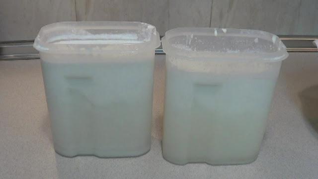 Dejamos que repose la leche de coco y que se separe la manteca del agua