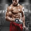 One-Set Workouts Build Muscle Fast