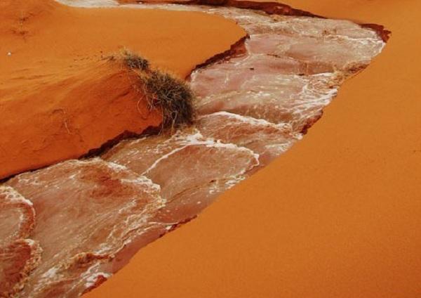 Fenomena gila dan aneh sekaligus unik terjadi di sebuah padang gurun Timur Tengah Sungai Ajaib di Gurun Tandus Arab