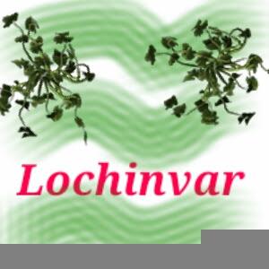 Lochinvar English Literature Question Answer Class 8