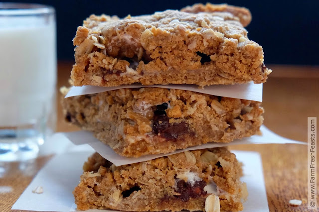 Layers of whole grain oatmeal peanut butter cookie surround plenty of dark chocolate and marshmallows in this thick, gooey, and chewy treat.