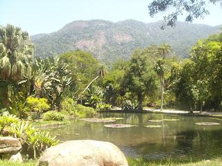 Floresta Urbana Rio de Janeiro