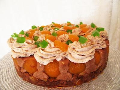 Torta od čokolade i marelica / Chocolate and apricot cake