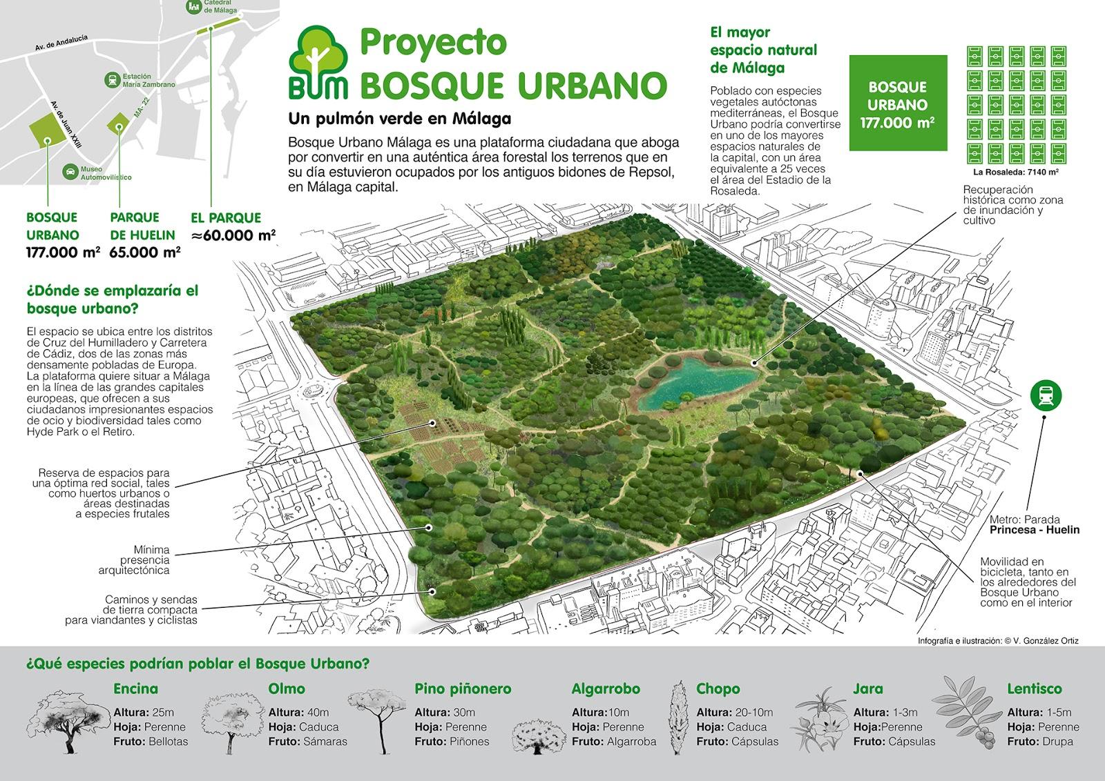 El bosque urbano de m laga un espacio verde de la - Espacios verdes malaga ...