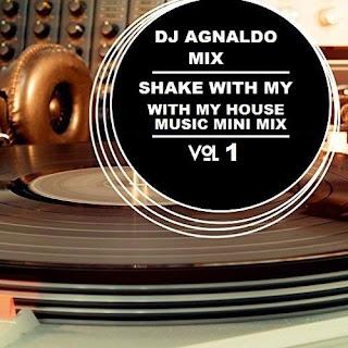 Dj Agnaldo Mix - Shake With My House Music