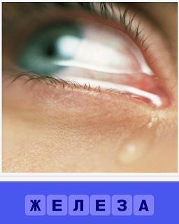 по щеке течет слеза из глаза, работает железа