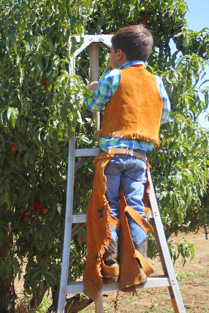 As The Noonday Summer Bucket List Peach Picking